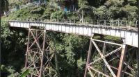 Murió haciendo bungee jumping: escuchó mal la señal y saltó al vacío sin cuerda