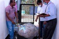 Hallan la piedra preciosa más grande del mundo: podría valer mil millones de dólares