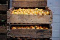 Un empresario fue atacado por narcos y le robaron ¡dos cajones de naranjas!