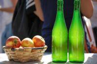 Festival de la Sidra: Conoce la fecha, el  lugar y todo lo que necesitas saber de esta nueva propuesta
