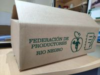 Se abrió la preinscripción para que pequeños y medianos productores comercialicen fruta